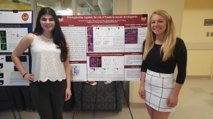 Undergraduate Research Day 2017